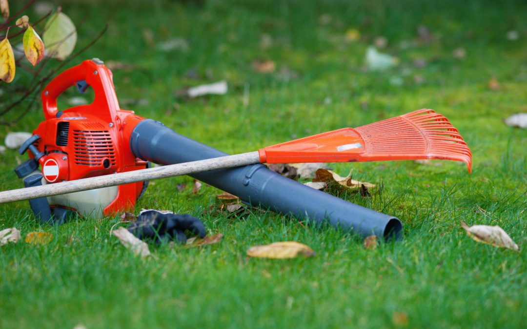Top 8 Useful and Affordable Lawn Care Tools EVERYONE Should Have